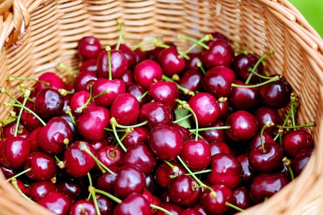 Modern Athletic Health Guest Post: Tart Cherry Extract – Vitamin (Ph